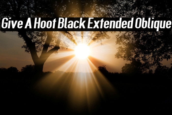 Give A Hoot Black Extended Oblique Fonte examples