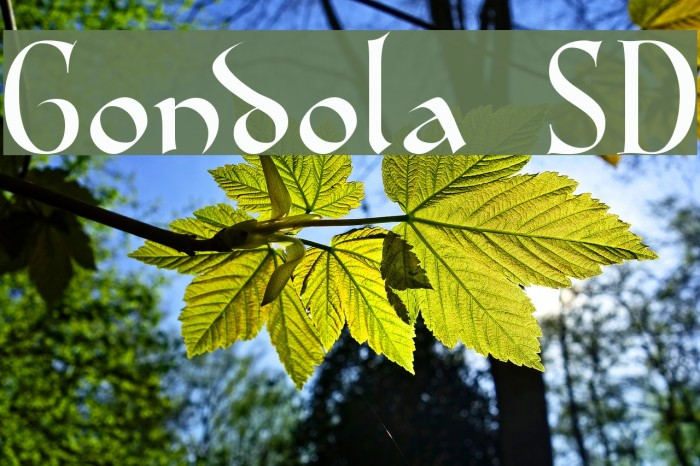 Gondola SD Font examples