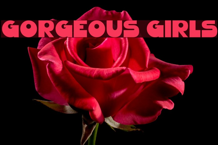 Gorgeous Girls 字体 examples