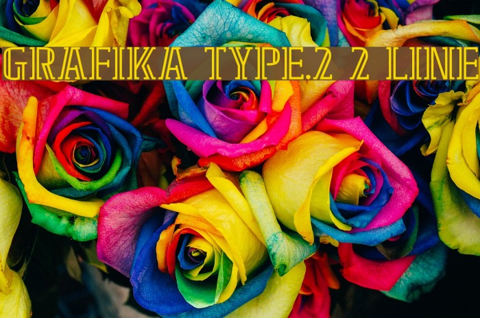 GRAFIKA TYPE.2 2 LINE Polices examples