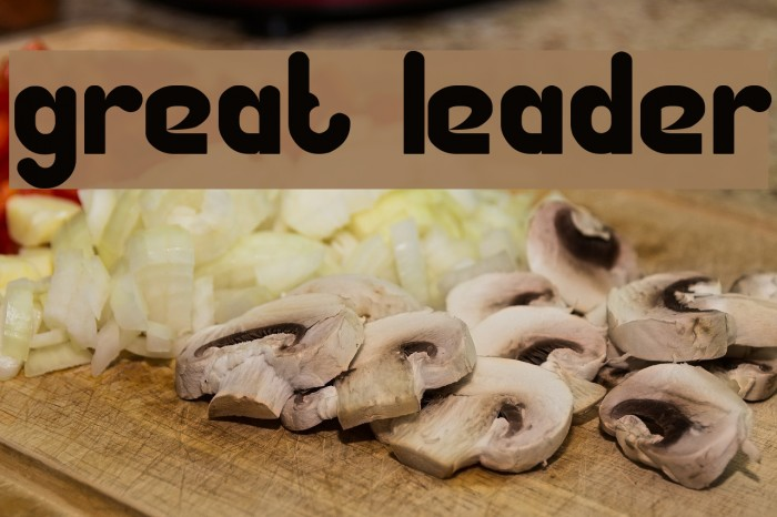 Great Leader Fonte examples