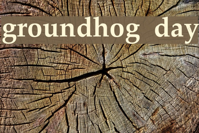 groundhog day Fonte examples