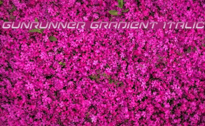 Gunrunner Gradient Italic Font examples