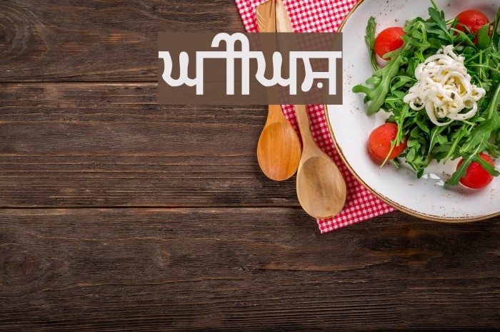 Gurmukhi_IIGS Шрифта examples