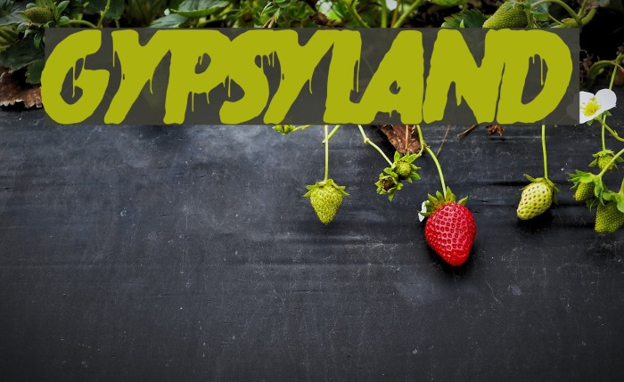 gypsyland フォント examples