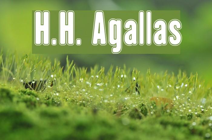 H.H. Agallas फ़ॉन्ट examples
