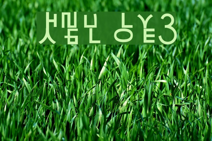 HaNgUl LoVe3 Font examples