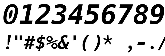 Hack Bold Oblique Font OTHER CHARS