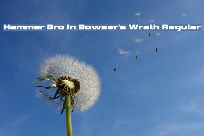 Hammer Bro In Bowser's Wrath Regular Fonte examples