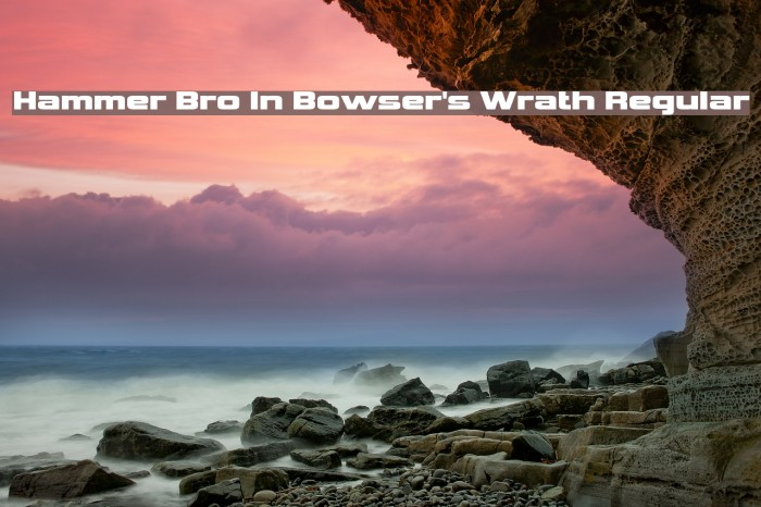 Hammer Bro In Bowser's Wrath Regular Font examples