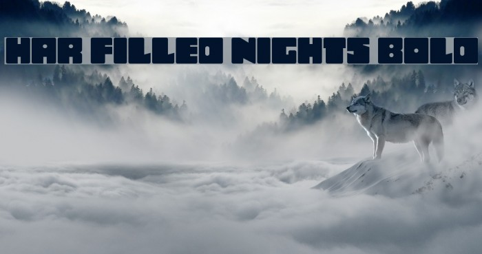 Har Filled Nights Bold Шрифта examples