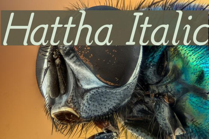 Hattha Italic Font examples
