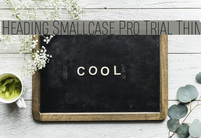 Heading Smallcase Pro Trial Thin Schriftart examples