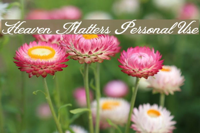 Heaven Matters Personal Use Caratteri examples