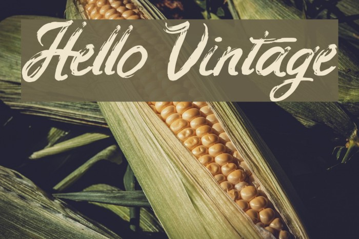 Hello Vintage フォント examples