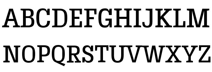 HermeneusOne Font UPPERCASE