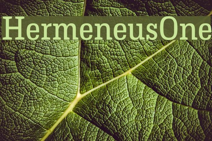 HermeneusOne Font examples