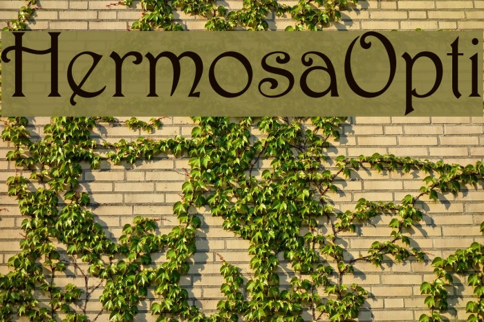 HermosaOpti Font examples
