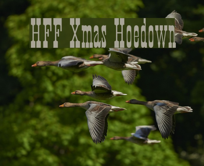 HFF Xmas Hoedown フォント examples