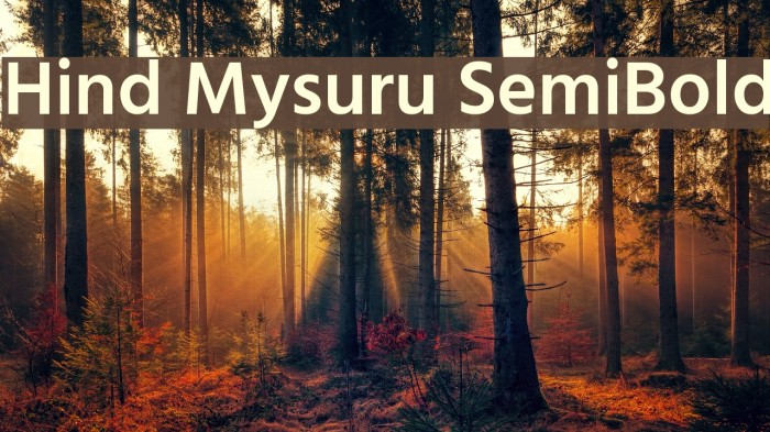 Hind Mysuru SemiBold Font examples