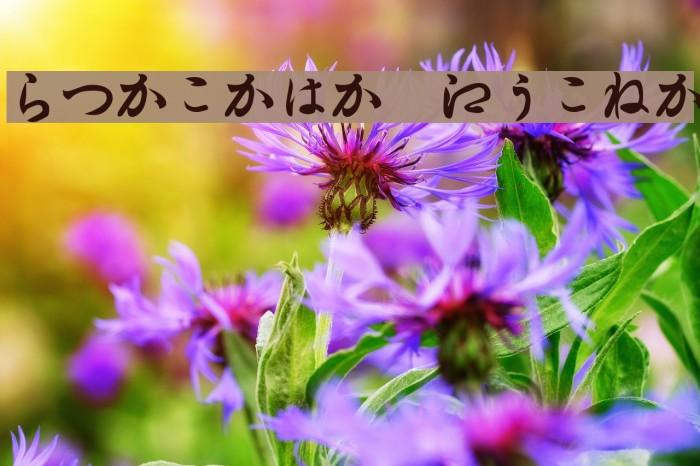 Hiragana Regular Font examples