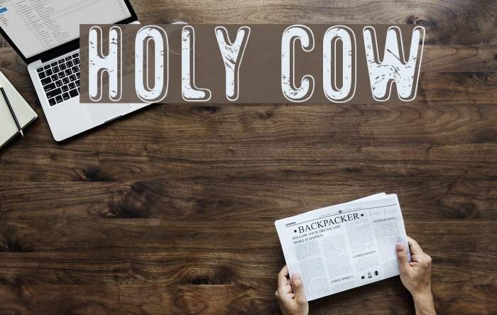 Holy Cow Font examples