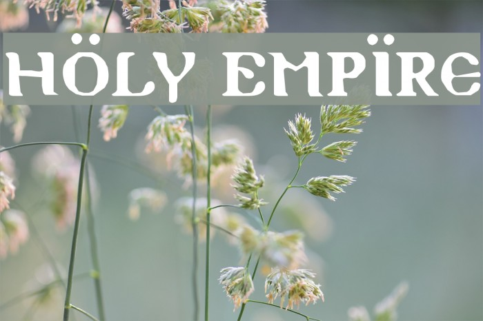 Holy Empire Font examples
