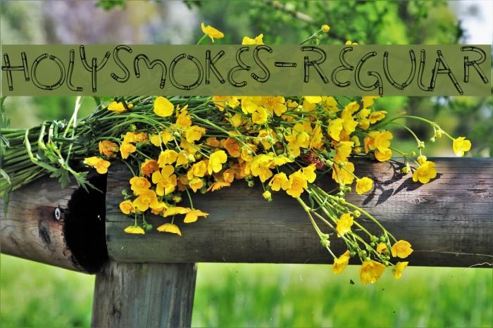 HolySmokes-Regular Font examples