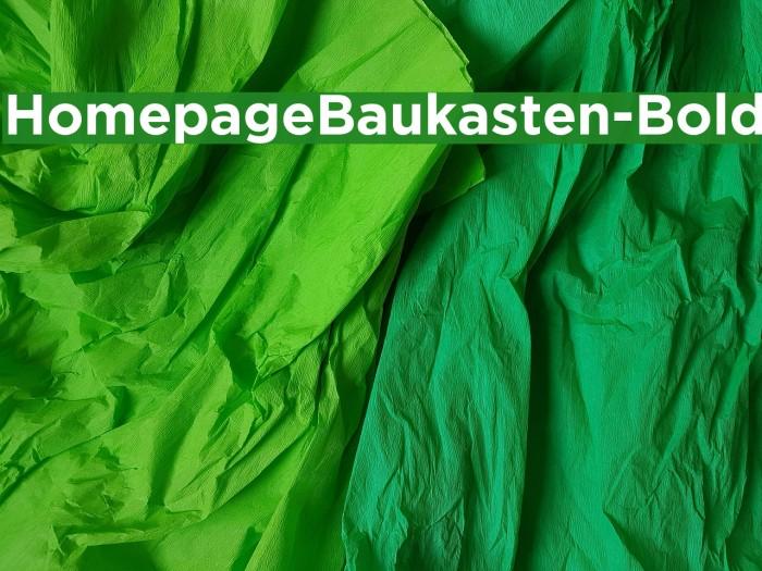 HomepageBaukasten-Bold Fonte examples