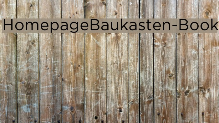 HomepageBaukasten-Book Шрифта examples
