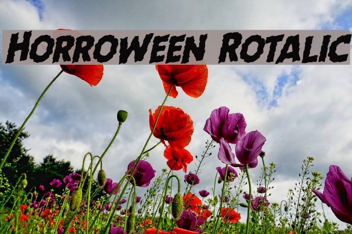Horroween Rotalic Font examples