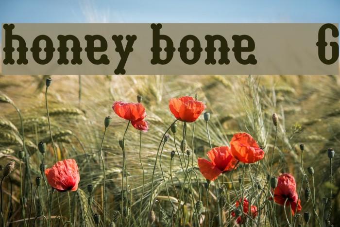 honey bone__G Шрифта examples