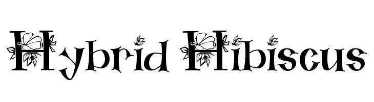 Hybrid Hibiscus  baixar fontes gratis