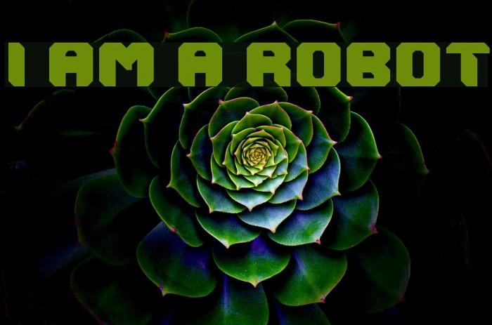 I AM A ROBOT Fonte examples