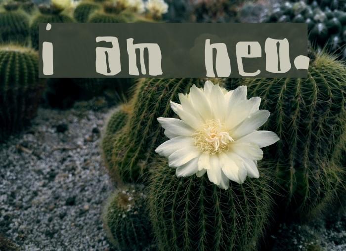 I am Nervous. Font examples