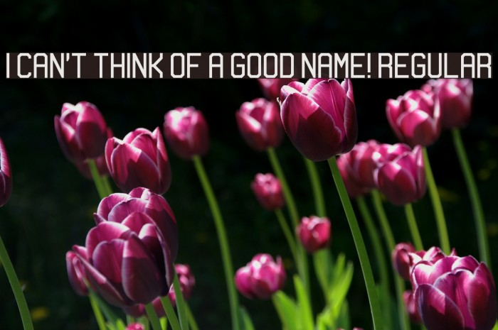 I can't think of a good name! Regular Шрифта examples
