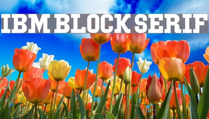 IBM Block Serif Font examples