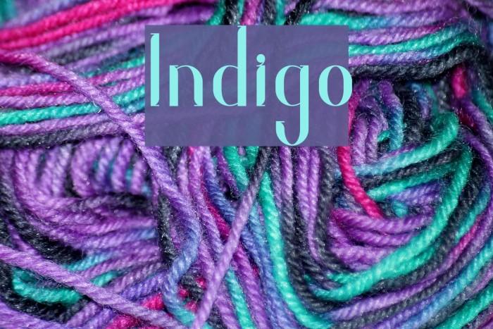 Indigo Polices examples