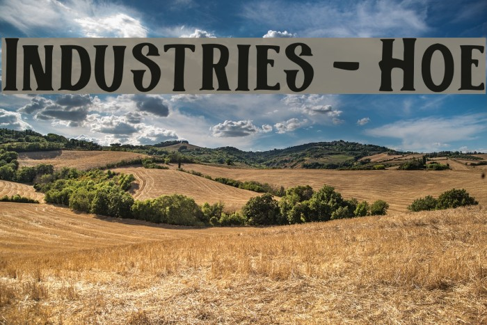 Industries - Hoe Polices examples