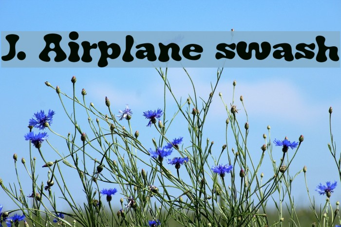 J. Airplane swash Font examples