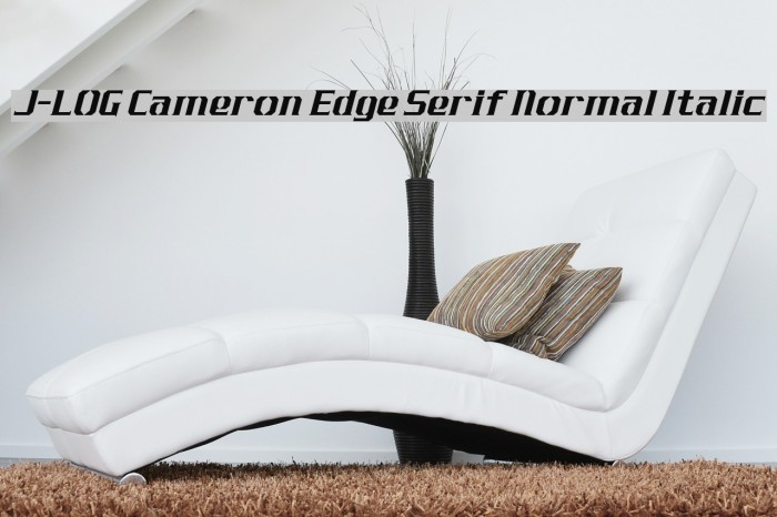J-LOG Cameron Edge Serif Normal Italic Font examples