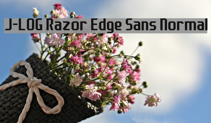 J-LOG Razor Edge Sans Normal Font examples