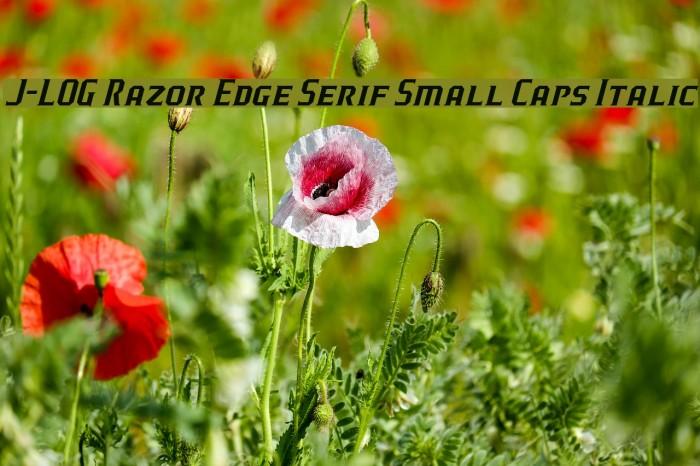 J-LOG Razor Edge Serif Small Caps Italic Font examples