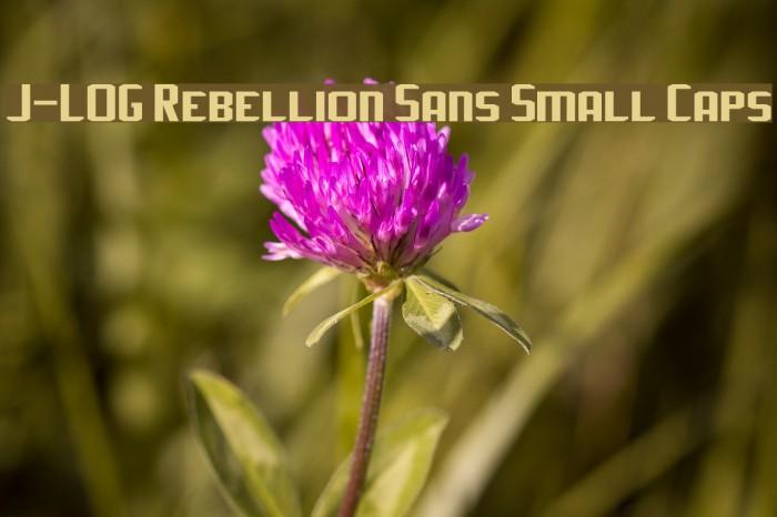 J-LOG Rebellion Sans Small Caps Font examples