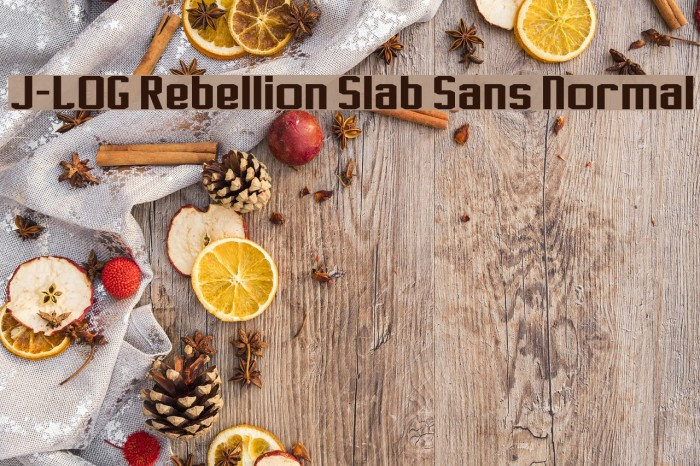 J-LOG Rebellion Slab Sans Normal Font examples