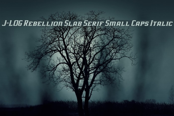J-LOG Rebellion Slab Serif Small Caps Italic Font examples