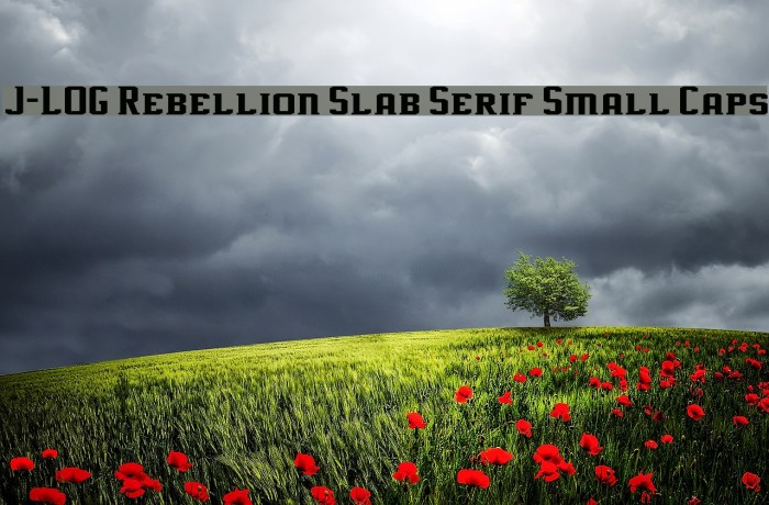 J-LOG Rebellion Slab Serif Small Caps Fonte examples