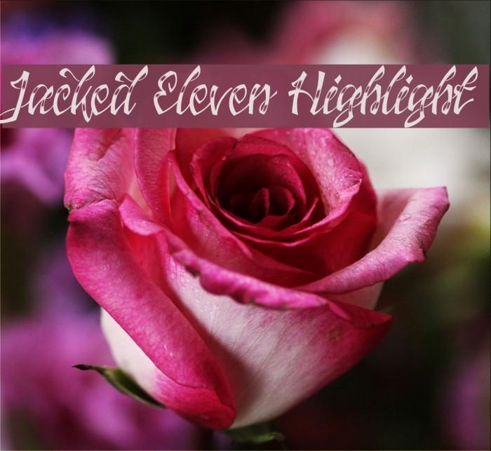 Jacked Eleven Highlight لخطوط تنزيل examples