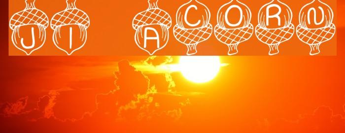 JI Acorn Font examples