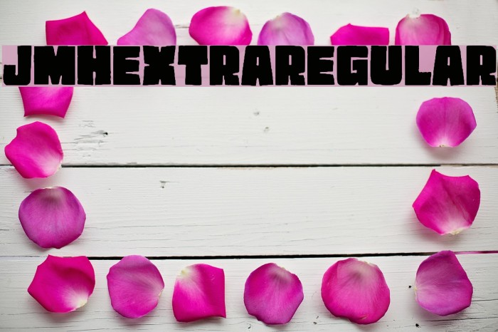 JMHEXTRA-Regular Font examples